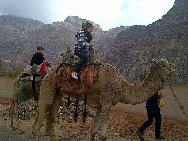 twidells_wadi-run_camels