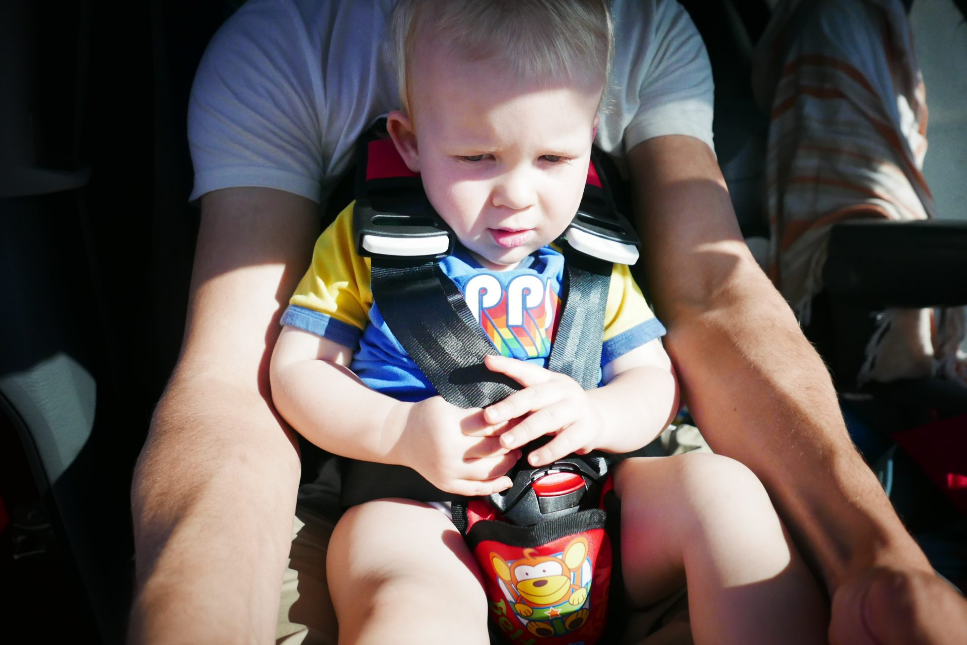Belt Up Baby Safety Harness – reviewed by Berian