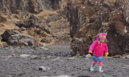 Tours By LOCALS | Member Review Iceland